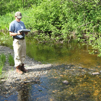 Low-Flow Streamgage Network in Michigan
