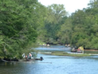 Response to an oilspill on the Kalamazoo River